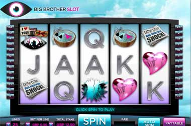 Big Brother Slots